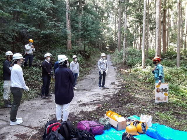 林業体験プログラム写真①