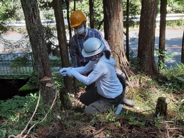 林業体験プログラム写真⓶
